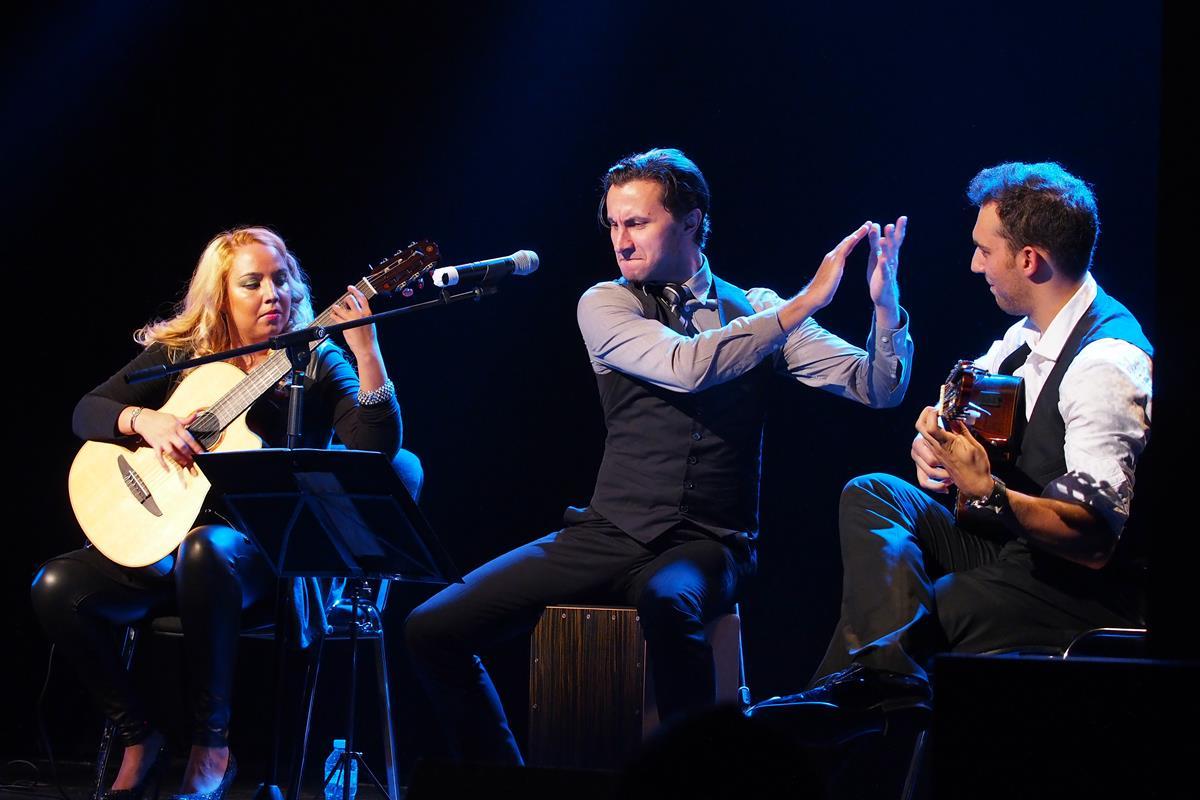 Concert Adrian Nour & Trio Zamfirescu